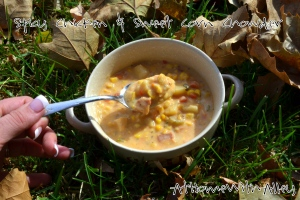 Spicy Chicken & Sweet Corn Chowder